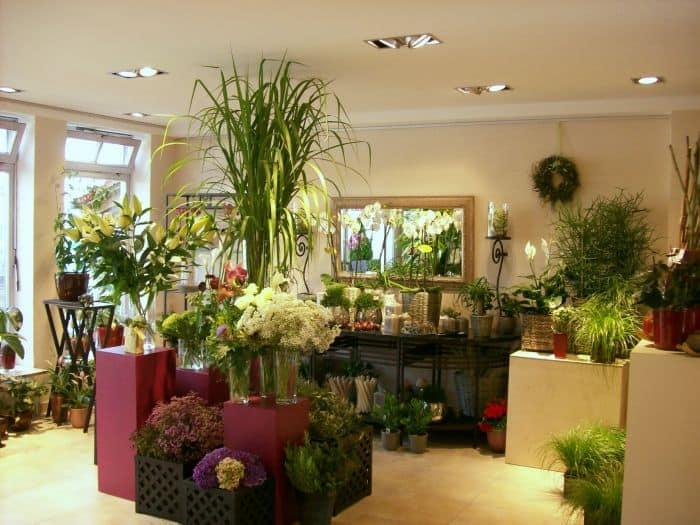 Blumenbinderei Shopbeleuchtung